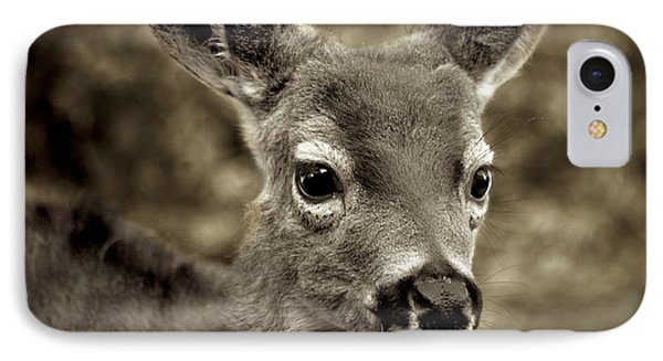 Young Curious Deer IPhone Case by Alex King