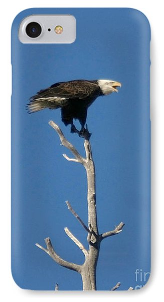 IPhone Case featuring the photograph Young Eagle by Mitch Shindelbower