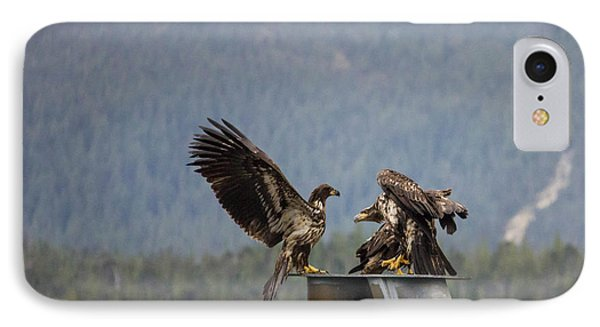 Young Eagles IPhone Case by Timothy Latta