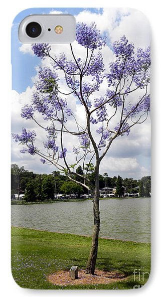 IPhone Case featuring the photograph Young Jacaranda Tree by Terri Mills