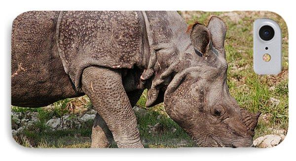 Young One-horned Rhinoceros Feeding IPhone Case by Jagdeep Rajput