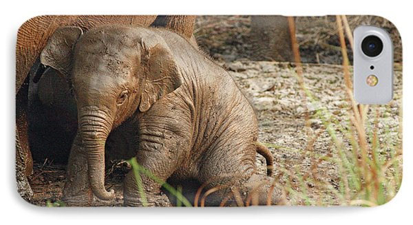 Young One Of Indian Elephant IPhone Case