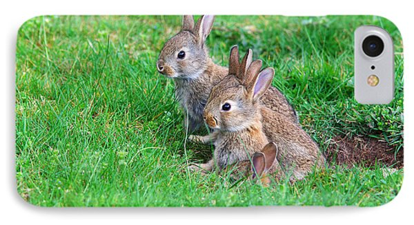 IPhone Case featuring the photograph Young Rabbits by Nick  Biemans