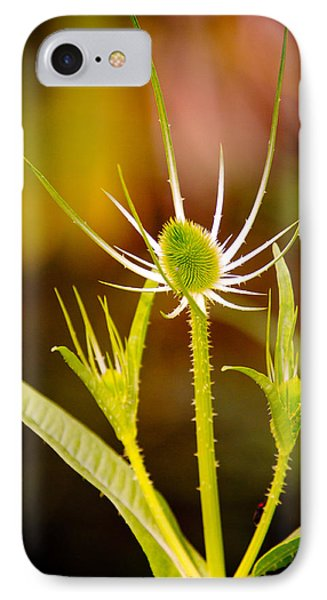 IPhone Case featuring the photograph Young Thistle by Janis Knight