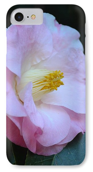 Youthful Camelia Phone Case by Maria Urso