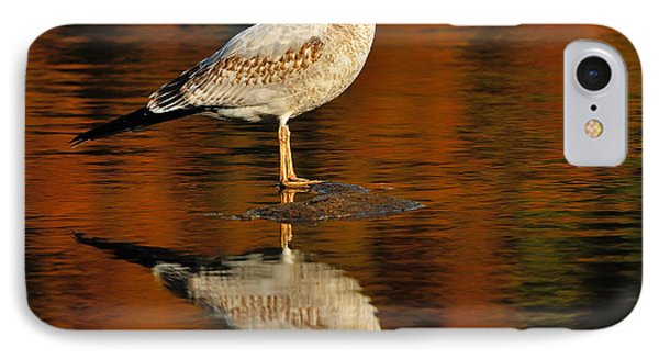 Youthful Reflections Phone Case by Tony Beck