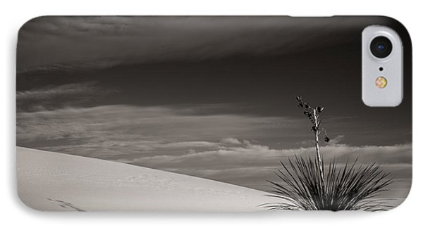 IPhone Case featuring the photograph Yucca In The Sandsiii by Sherry Davis