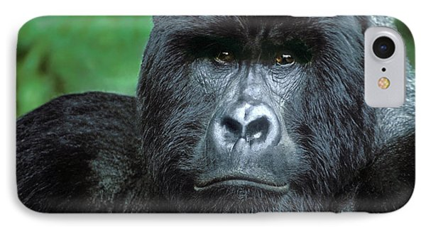 Zaire, Virungas National Park IPhone Case by Jaynes Gallery