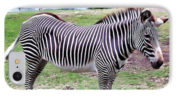 IPhone Case featuring the photograph Zebra 1 by Dawn Eshelman