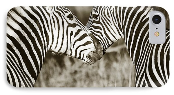 IPhone Case featuring the photograph Zebra Affection by Liz Leyden