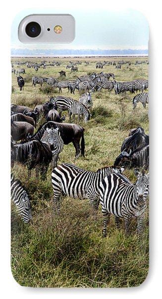 Zebra And Wildebeest IPhone Case by Marc Levine
