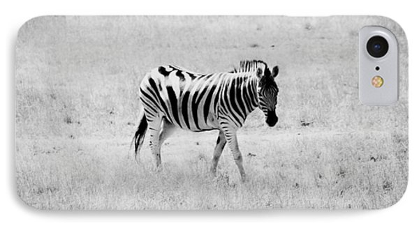 Zebra Explorer Phone Case by Melanie Lankford Photography