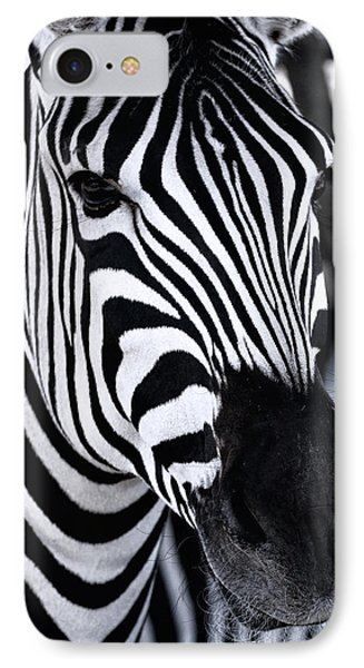 Zebra IPhone Case by Goyo Ambrosio