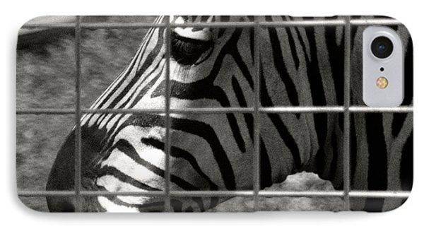 IPhone Case featuring the photograph Zebra Grid by Tom Brickhouse