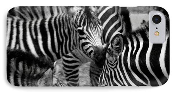 IPhone Case featuring the photograph Zebra In A Crowd by Tom Brickhouse