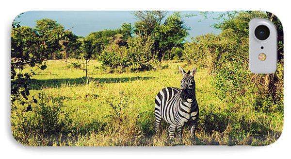 Zebra In Grass On African Savanna. Phone Case by Michal Bednarek