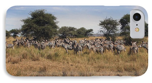 IPhone Case featuring the photograph Zebra by Joseph G Holland