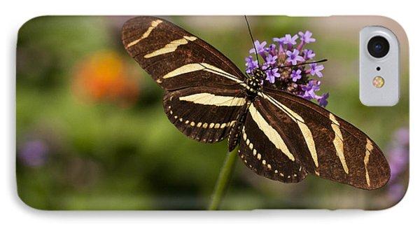 Zebra Longwing Butterfly IPhone Case by Adam Romanowicz