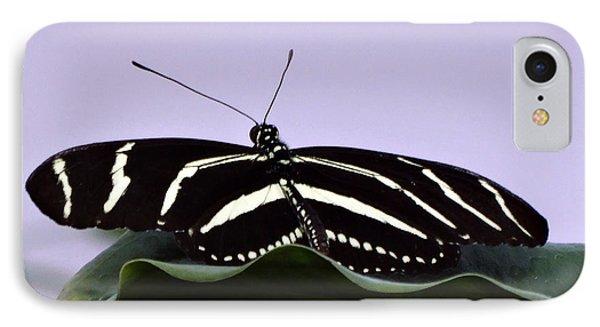 Zebra Longwing Butterfly IPhone Case by Gena Weiser