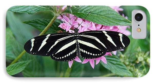 Zebra Longwing Butterfly IPhone Case