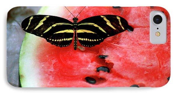 Zebra Longwing Butterfly On Watermelon Slice IPhone Case