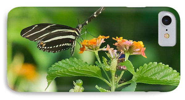 IPhone Case featuring the photograph Zebra Longwing by Jane Luxton