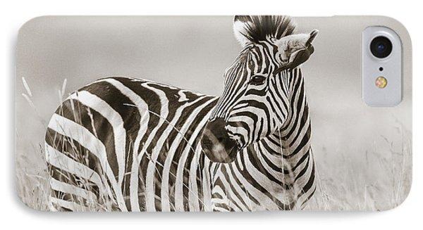 Zebra Masai Mara Kenya IPhone 7 Case