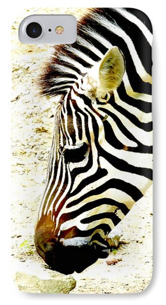Zebra Mug Shot IPhone Case