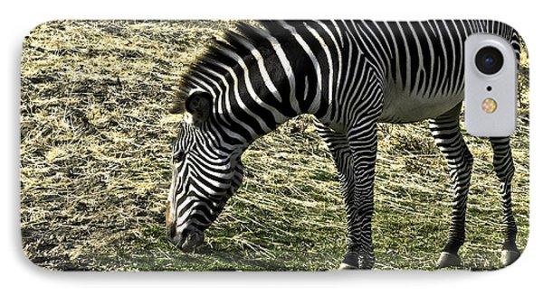 Zebra Striped Fourlegger Phone Case by LeeAnn McLaneGoetz McLaneGoetzStudioLLCcom