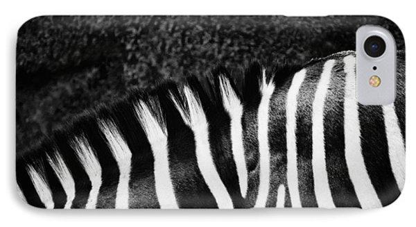 Zebra Stripes IPhone Case by Joan Herwig