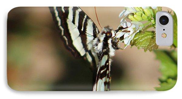 Zebra Swallowtail IPhone Case by Candice Trimble