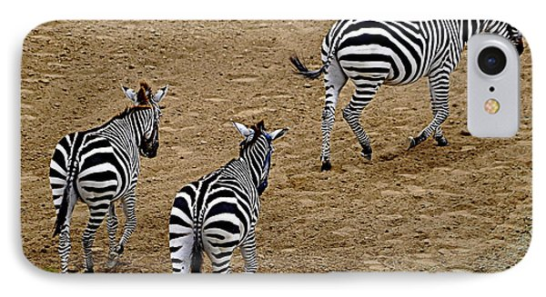 IPhone Case featuring the photograph Zebra Tails by AJ  Schibig