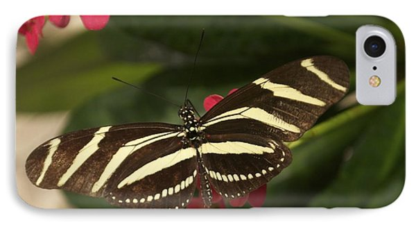 IPhone Case featuring the photograph Zebras Can Fly by Sandy Molinaro
