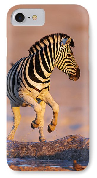 Zebras Jump From Waterhole IPhone Case by Johan Swanepoel