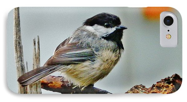 IPhone Case featuring the photograph Zen Chickadee by VLee Watson