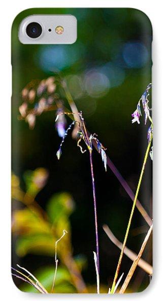 Zigzag Fireworks IPhone Case by Michelle Wiarda