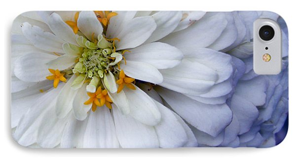 Zinnia IPhone Case by Amy Williams