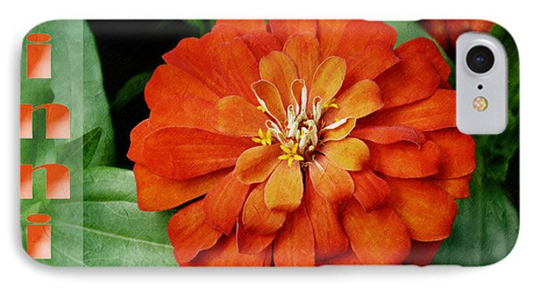 Zinnia IPhone Case by Andee Design
