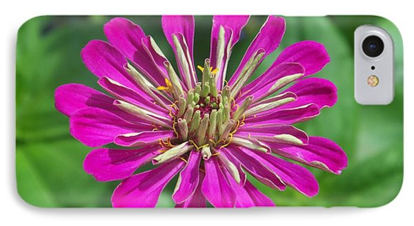 IPhone Case featuring the photograph Zinnia Opening by Eunice Miller