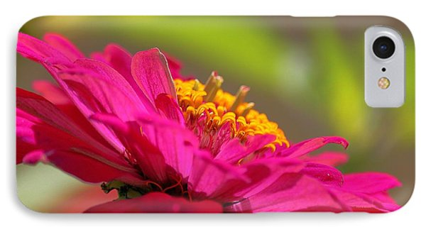 Zinnia Show IPhone Case by Erica Hanel