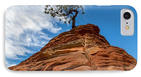 Zion Cypress Phone Case by John Daly