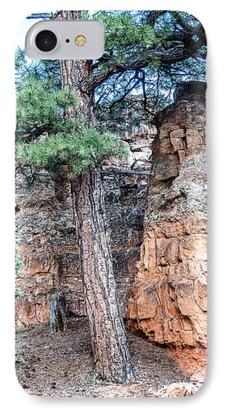 Zion Nat. Park Lan464 IPhone Case by G L Sarti