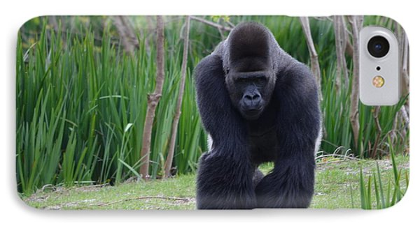 Zootography Of Male Silverback Western Lowland Gorilla On The Prowl Phone Case by Jeff at JSJ Photography