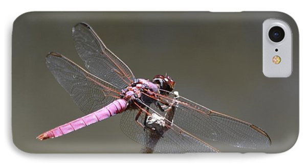 Zootography2 Pink Dragonfly Phone Case by Jeff at JSJ Photography