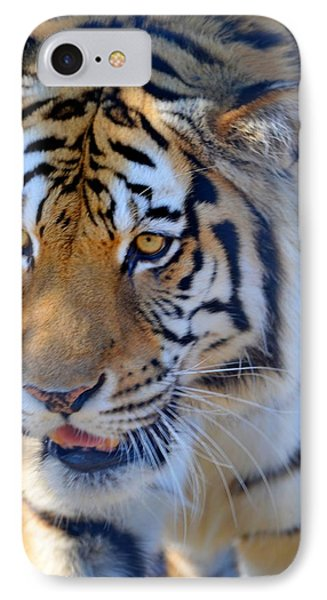 Zootography3 Tiger Prowl Close-up Phone Case by Jeff at JSJ Photography