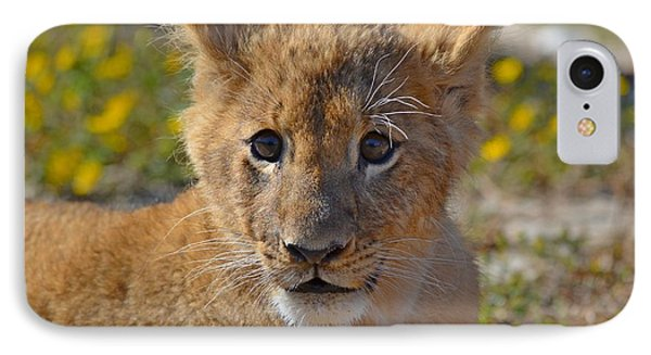 Zootography3 Zion The Lion Cub Phone Case by Jeff at JSJ Photography