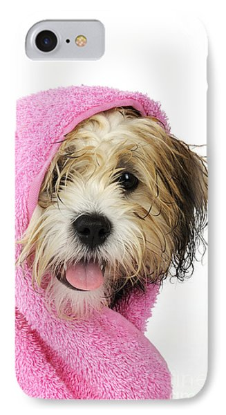Zuchon Teddy Bear Dog, Wet In Pink Towel IPhone Case by John Daniels