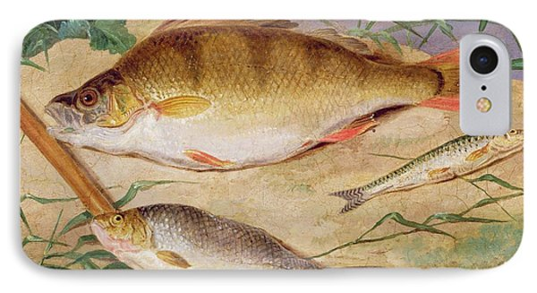 An Angler's Catch Of Coarse Fish Phone Case by D Wolstenholme