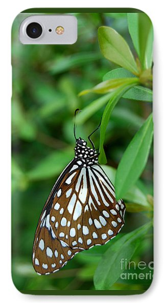 IPhone Case featuring the photograph  Blue Tiger Butterfly by Eva Kaufman