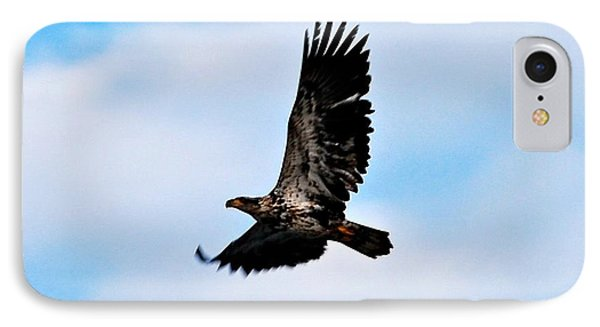 IPhone Case featuring the photograph  Juvenile Bald Eagle by Peggy Franz